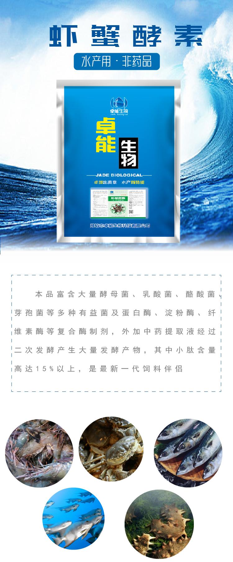 虾蟹酵素-1.png