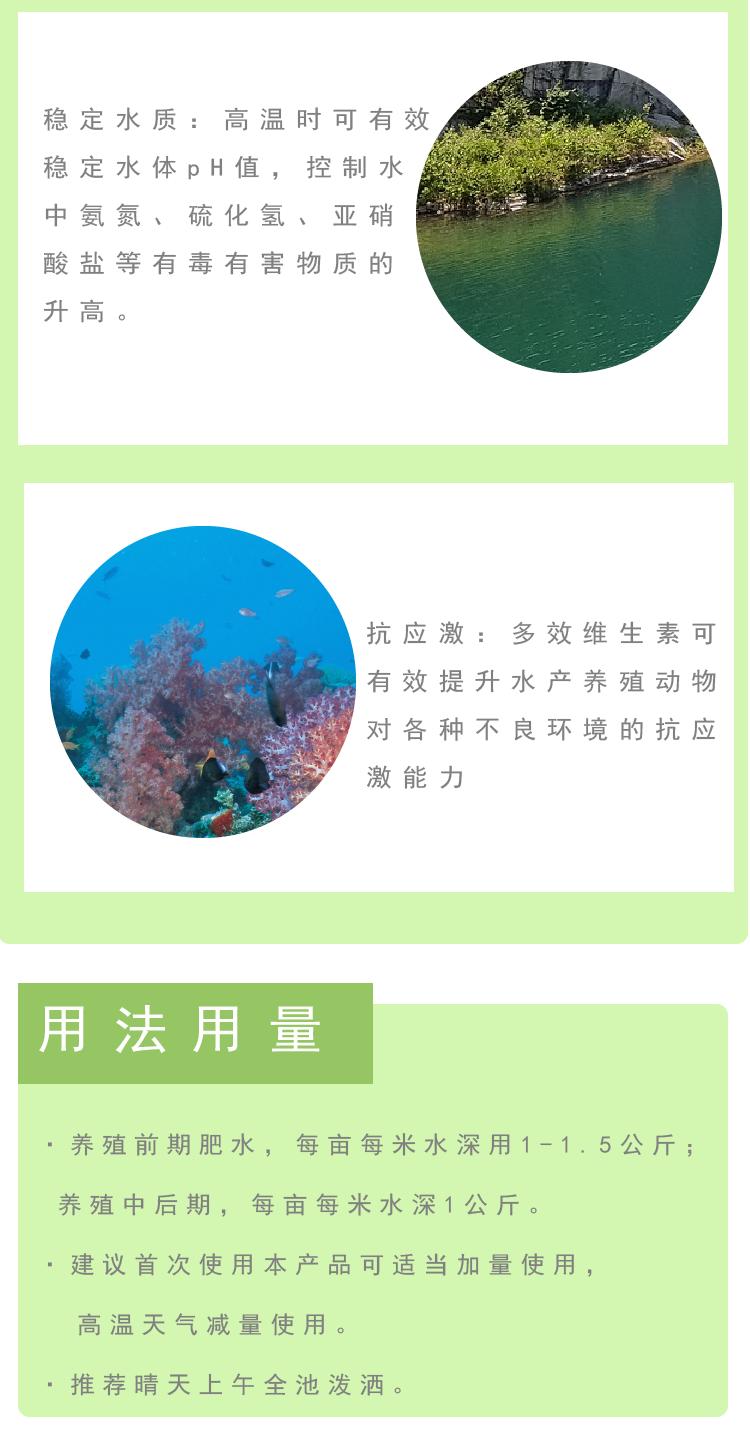 壮根护草素-3.png